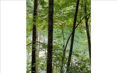 Murphy NC Residential Lots & Land For Sale: $58,000