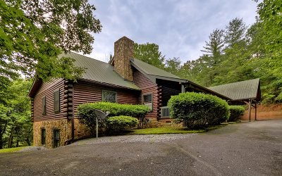 Ellijay Single Family Home For Sale: 708 Indian Cave Road