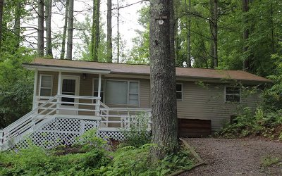 Blairsville Single Family Home For Sale: 183 Robertson Circle