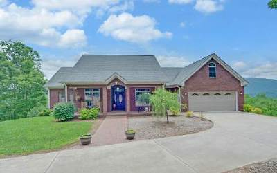 Blairsville Single Family Home For Sale: 107 Coker Lane