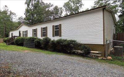 Ellijay Single Family Home For Sale: 255 Fern Gully Way