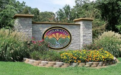 Ellijay Residential Lots & Land For Sale: L101r Ridge Crest Circle