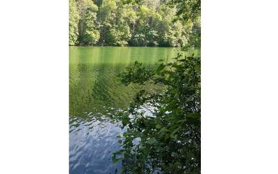 Murphy NC Residential Lots & Land For Sale: $55,000