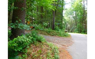 Blairsville GA Residential Lots & Land For Sale: $32,500
