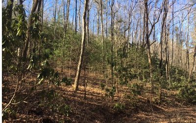 Andrews Residential Lots & Land For Sale: Whispering Pines Hol