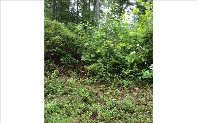 Murphy NC Residential Lots & Land For Sale: $9,800