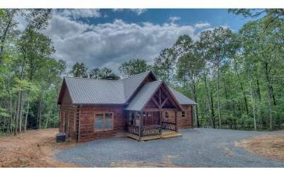 Mineral Bluff Single Family Home For Sale: 33 Stuart Mountain