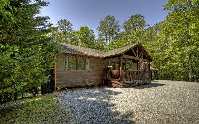 Ellijay Single Family Home For Sale: 199 Hillsdale Drive