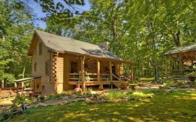 Ellijay Single Family Home For Sale: 429 Abbott Top Road