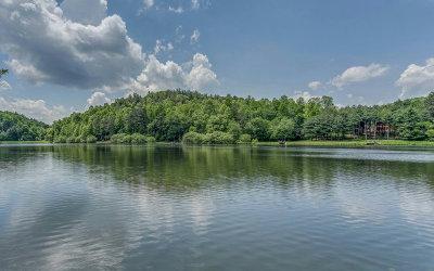 Ellijay Single Family Home For Sale: 67 Lake Buckhorn