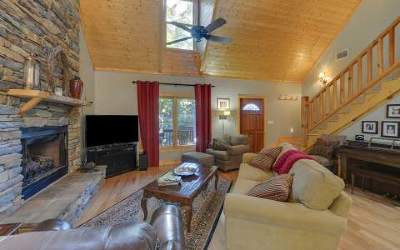 Blairsville Single Family Home For Sale: 195 Paradise Road