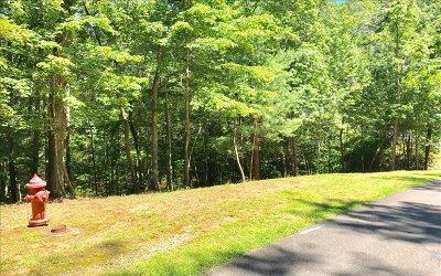 Ellijay Residential Lots & Land For Sale: Lt56r N Harris Creek Drive