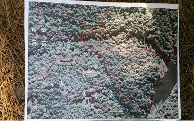 Ellijay Residential Lots & Land For Sale: 19+ac Kirkland Lake Rd