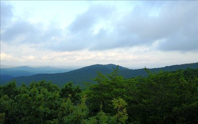 Ellijay Residential Lots & Land For Sale: 9.56 Piney Spur Road