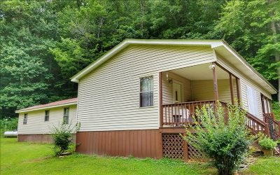 Ellijay Single Family Home For Sale: 383 Oxford Dr