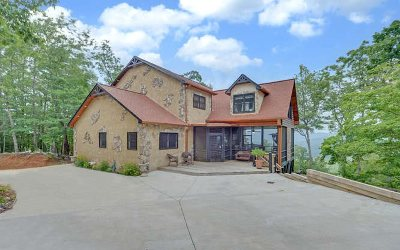 Mineral Bluff Single Family Home For Sale: 93 Katahdin