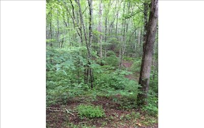 Murphy NC Residential Lots & Land For Sale: $11,000