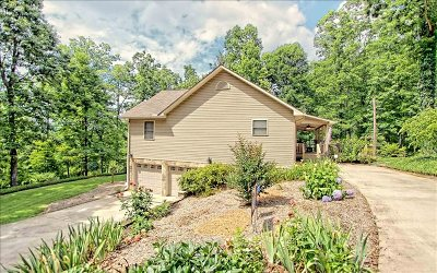 Hayesville Single Family Home For Sale: 103 Eagles View