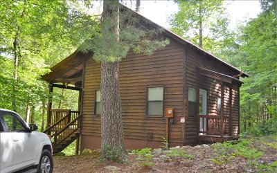 Blairsville Single Family Home For Sale: 107 McCullers Rd
