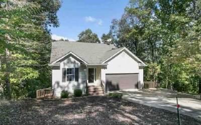 Ellijay Single Family Home For Sale: 290 Muffle
