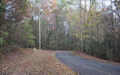 Ellijay Residential Lots & Land For Sale: Lt 14 Maple Rest Lane
