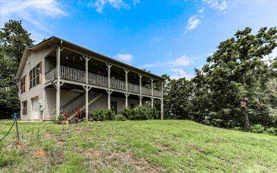 Ellijay Single Family Home For Sale: 524 Barnes Mountain Rd