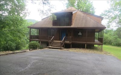Blairsville Single Family Home For Sale: 625 Gainesville Hwy