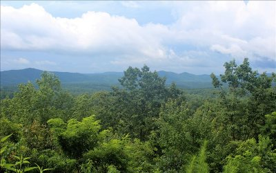 Murphy NC Residential Lots & Land For Sale: $25,000