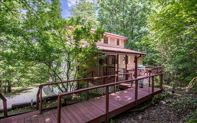 Mineral Bluff Single Family Home For Sale: 361 Huckleberry Lane