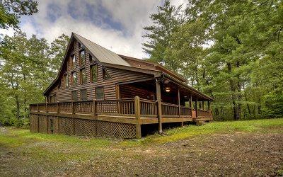 Blue Ridge Single Family Home For Sale: 245 Hillbilly Holler