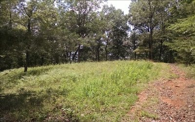 Ellijay Residential Lots & Land For Sale: 32+ac Oxford Road