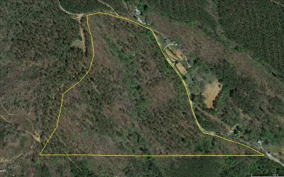 Ellijay Residential Lots & Land For Sale: Leeches Rd