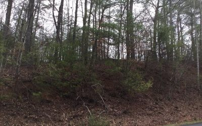 Ellijay Residential Lots & Land For Sale: Tails Creek Church R