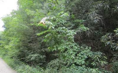 Ellijay Residential Lots & Land For Sale: 304 Agate