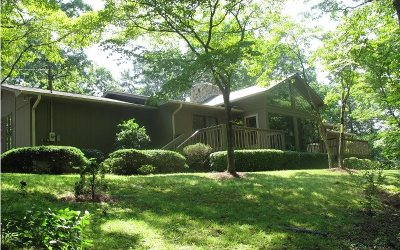 Ellijay Single Family Home For Sale: 111 Spring Drive