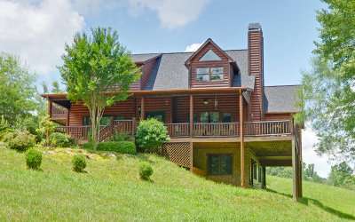 Blairsville Single Family Home For Sale: 172 English Rose