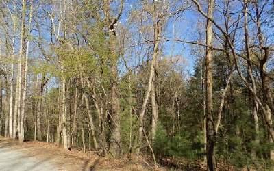Ellijay Residential Lots & Land For Sale: L 581 Carol Lane
