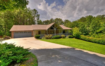 Mineral Bluff Single Family Home For Sale: 275 Autumn Ridge Drive