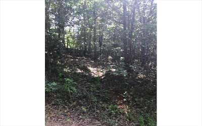 Blairsville Residential Lots & Land For Sale: Lt 1a Old Beech Road
