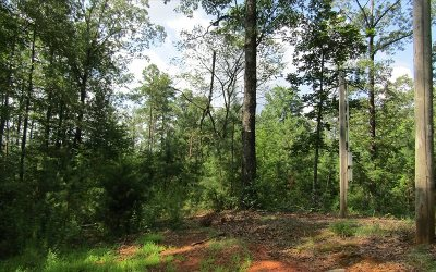 Ellijay Residential Lots & Land For Sale: Dover Chapel Rd