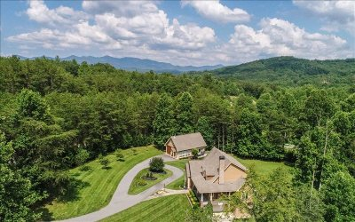 Blairsville Single Family Home For Sale: 3525 Owltown Road