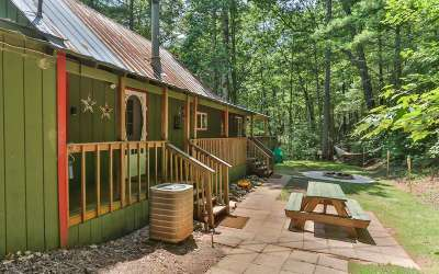 Ellijay Single Family Home For Sale: 885 Whitecliff