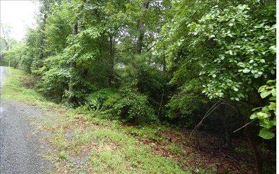 Ellijay Residential Lots & Land For Sale: Lot90 Oak Ridge Ln