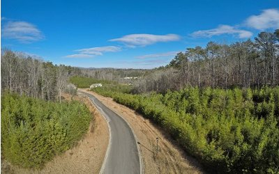 Ellijay Residential Lots & Land For Sale: 11ac Summit View