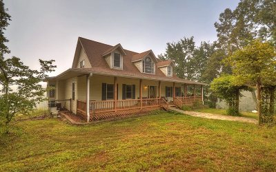Blairsville Single Family Home For Sale: 166 Nana And Papas Trail