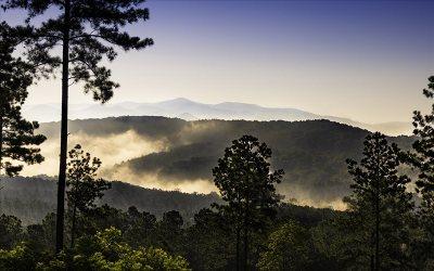 Blairsville Residential Lots & Land For Sale: Lt122 Thirteen Hundred