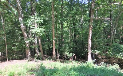 Blairsville Residential Lots & Land For Sale: Rocky Top Heights