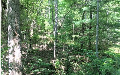 Blairsville Residential Lots & Land For Sale: Bruce Mtn