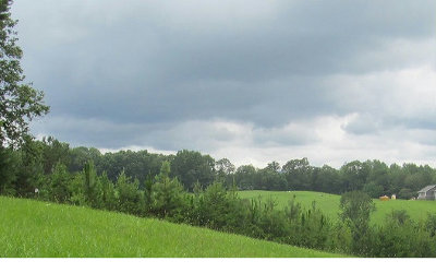 Blairsville Residential Lots & Land For Sale: Fox Fields