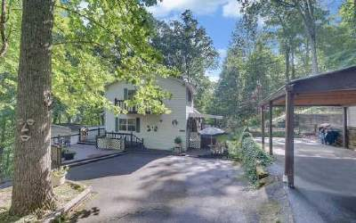 Blairsville Single Family Home For Sale: 473 Ross Ridge